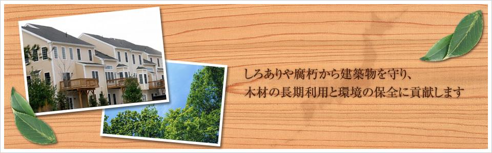 しろありや腐朽から建築物を守り、木材の長期利用と環境の保全に貢献します